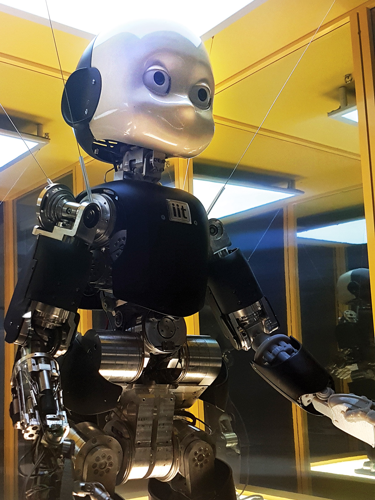 iCub, the robot developed by the Italian Institute of Technology